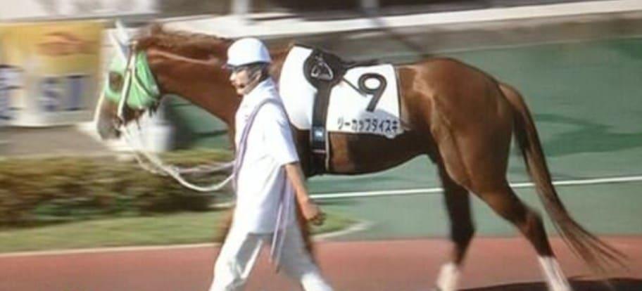 競走馬 名前 面白い