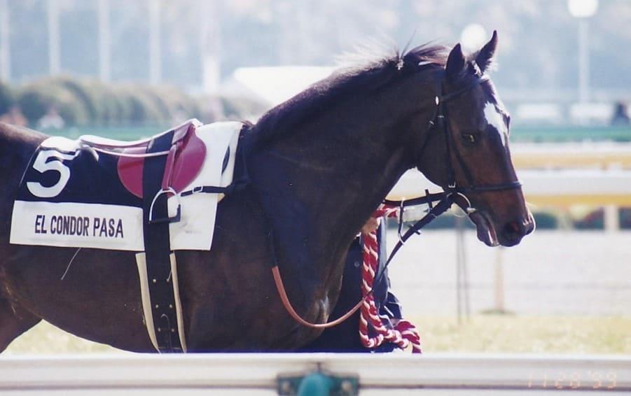 競走馬 ランキング エルコンドルパサー