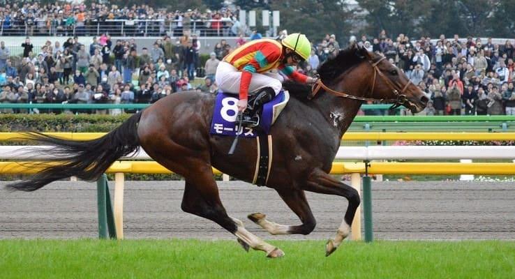 競走馬 ランキング モーリス