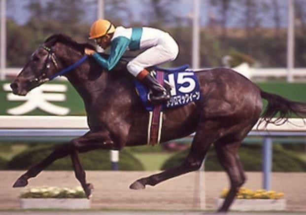 競走馬 ランキング メジロマックイーン